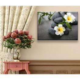 Модульные картины серии Цветы и камни